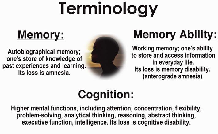 ltr_terminology.jpg